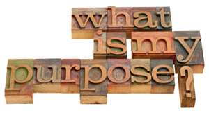 Image result for what is your purpose for today